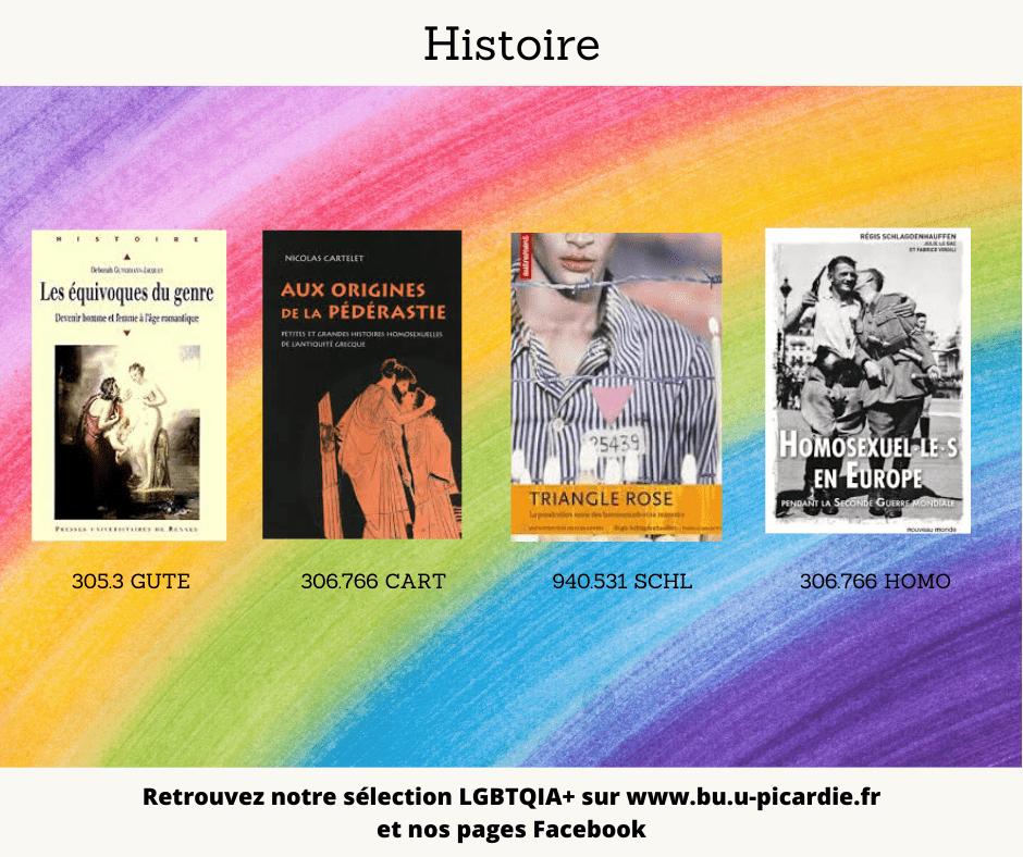 Visuel bibliographie thématique LGBTQIA+, couvertures des livres pour le choix en histoire