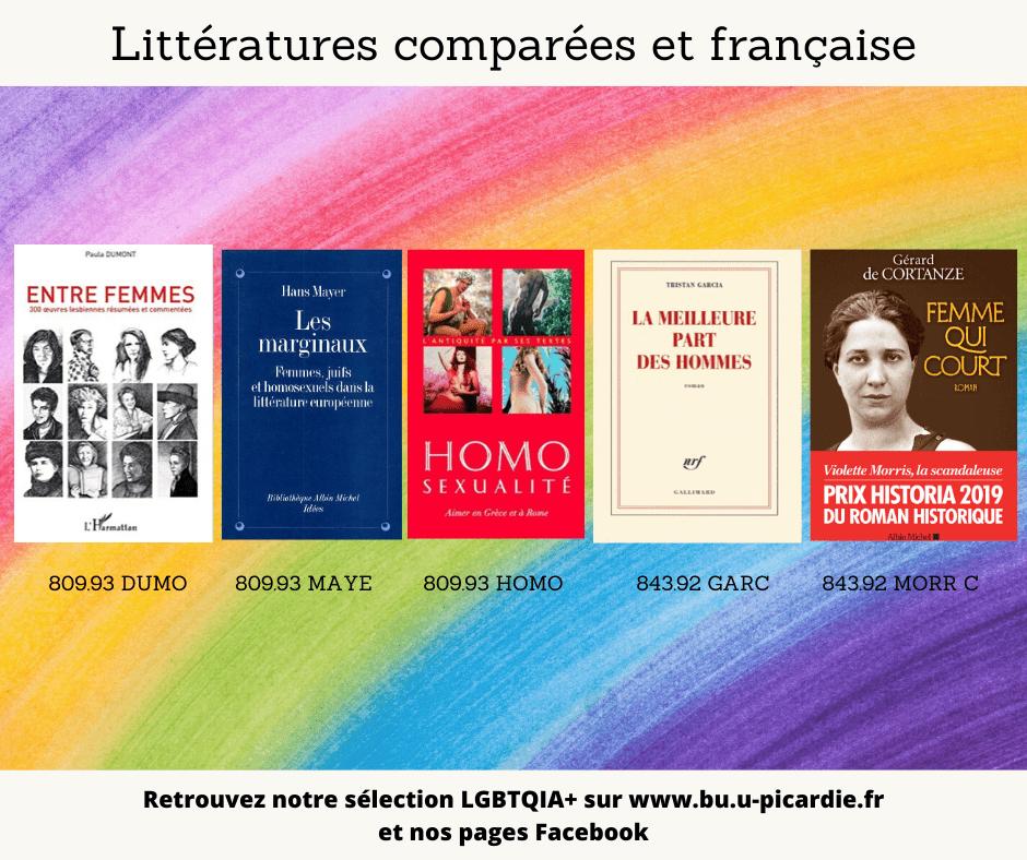 Visuel bibliographie thématique LGBTQIA+, couvertures des livres pour le choix en littérature