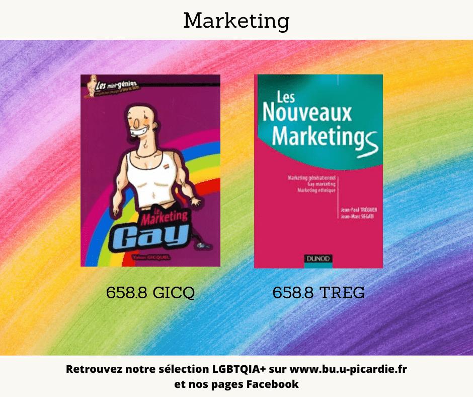 Visuel bibliographie thématique LGBTQIA+, couvertures des livres pour le choix en marketing