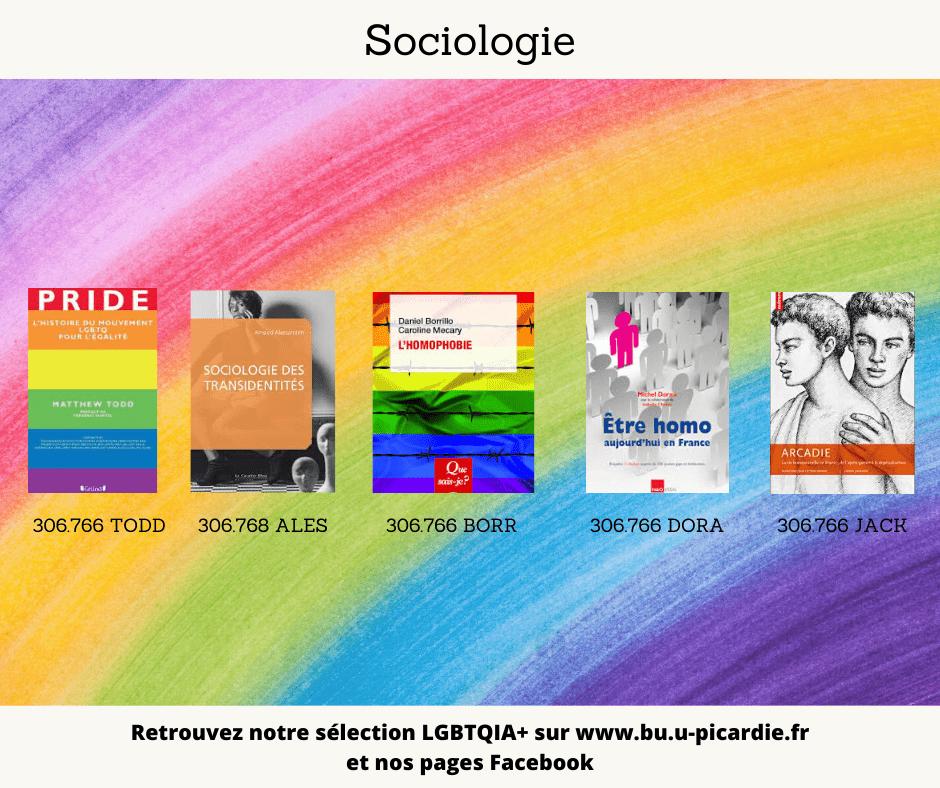 Visuel bibliographie thématique LGBTQIA+, couvertures des livres pour le choix en sociologie
