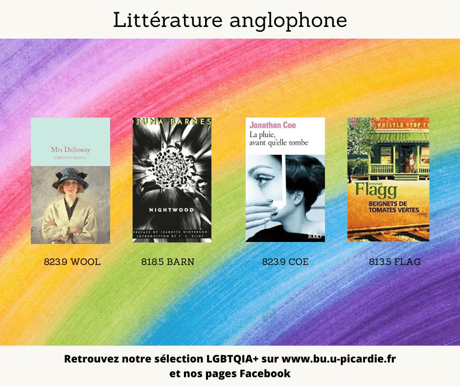Visuel bibliographie thématique LGBTQIA+, couvertures des livres pour le choix en littérature anglophone