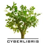 Logo 2020 Cyberlibris