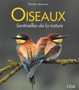 oiseaux sentinelles nature